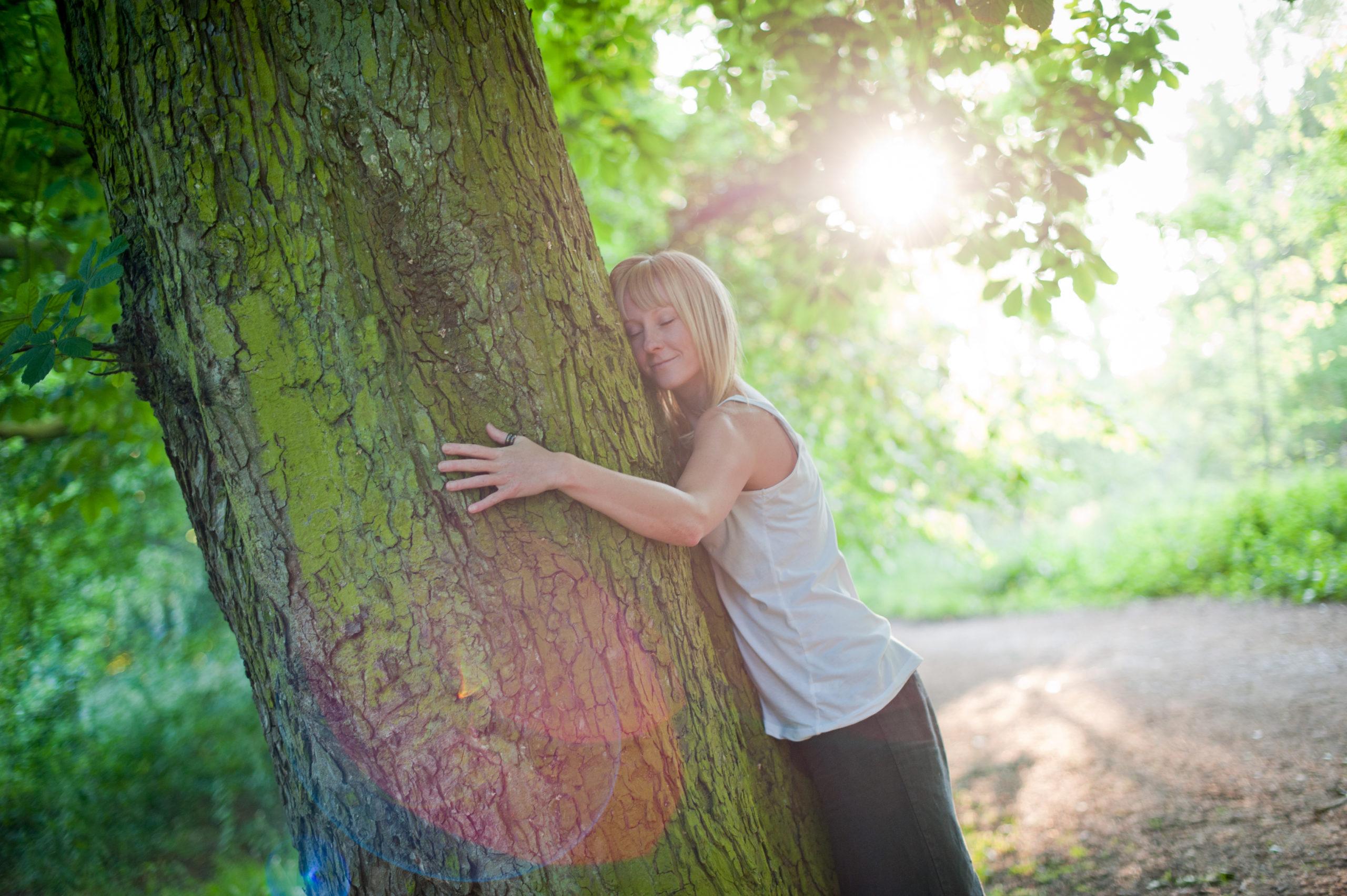 healing_trees__coaching