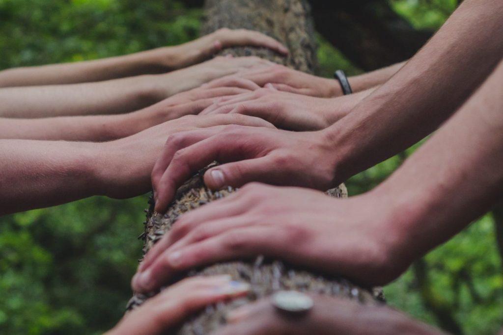 hands_tree_trunk_teamtraining